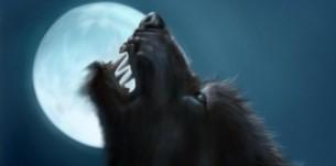 CAM4 Moderator WerewolfHH legt de kneepjes van het vak uit!