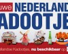 Breaking News: NL CAM4 Kadootjes! WEDSTRIJD: Geef je op!